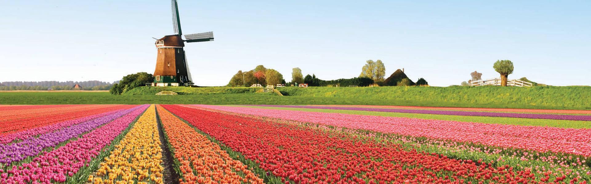Ik hou van Holland - Restaurant Zalen van Veen