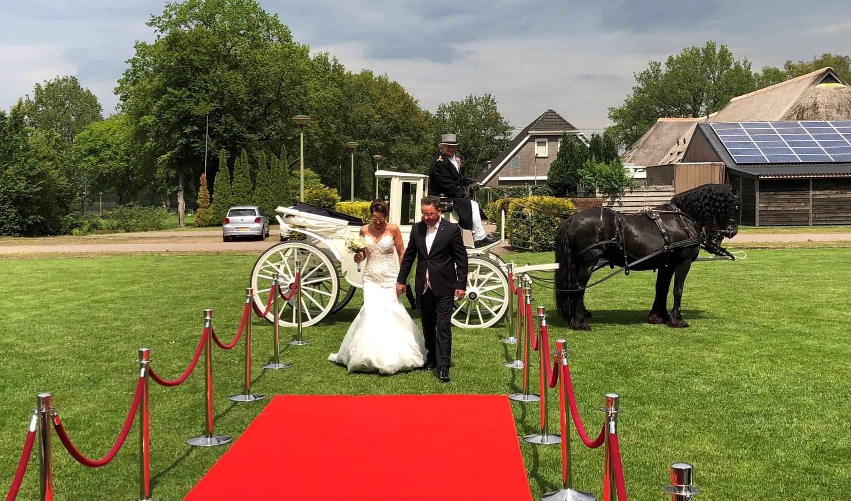 Bruidspaar in koets - Zalencentrum van Veen